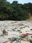 "The famous nude beach ""Playa Nudista"" on Contadora, sadly blemished with trash washed ashore."