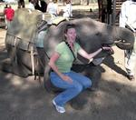 Kristi give the elephant another snack.