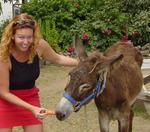 "Cherie feeds the donkey at ""The Last Resort."""