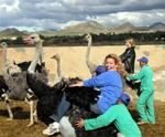 Cherie riding an Ostrich in South Africa.