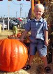 Who weighs more?  Tanner or the pumpkin.