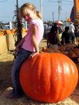 Ellie and her pumpkin of choice.
