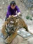 Kirsty and the tiger.