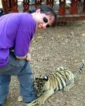 The tiger cub grabs onto Kirsty's leg.