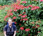 Hannah with wild Poinsettias.