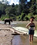 Choices to the next village: Bamboo raft or elephant?