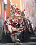 His feet don't stink!  The mythical Barong dances in a traditional Balinese performance.