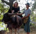 A Shan farmer lets me ride his water-buffalo bareback in a village near Thibaw, Myanmar. *Photo by Aunt Lynda.