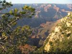 The Grand Canyon is both lush and barren at the same time.