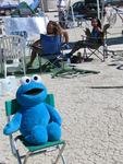 Cookie Monster chilling out in front of our camp.