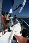 Hold onto that puff! Dustin on the spinnaker sheet. *Photo by Karen Vaccaro S/V Miela.