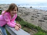 Ellie entertained by the elephant seals.