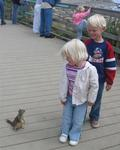 Squirrel friends.