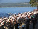 Swimmers crowd the lakeshore.