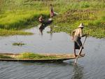 There are many reasons why people say the Intha people paddle with their legs (instead of with their arms.)