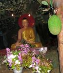 The Buddha and the breadfruit.