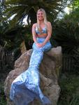 Come and visit the wonderful mermaids at Weeki Wachee!