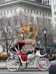 Ready for a carriage ride through NY's Central Park?