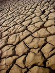 The cracked earth of Death Valley.  Bring your own water here!