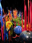 Eleven galleries of Dale Chihuly glass art can be found until September 28th at the de Young Museum in San Francisco, CA.  Don't miss it!
