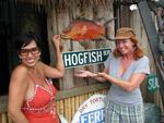 Cherie's Choice Key West Pub Crawl started at the Hogfish on Stock Island.  Drink #0, time 2:00pm.
