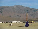 Music in the desert.